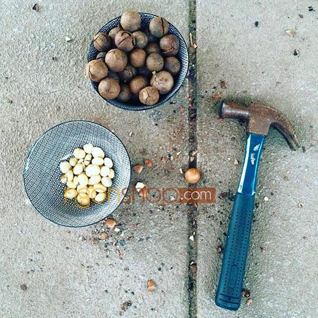 Cách ăn hạt macca