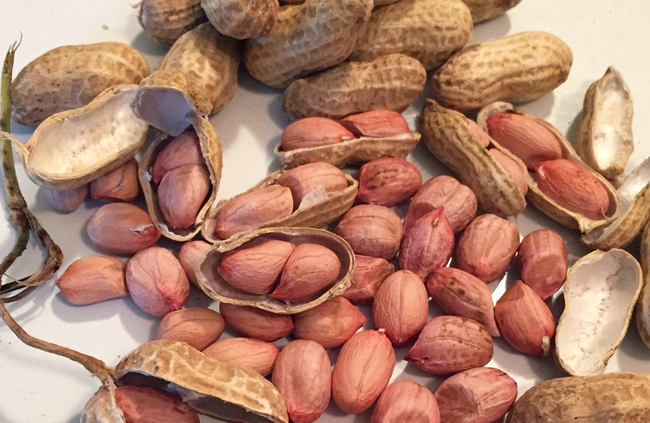 ăn đậu phộng tốt cho tim mạch