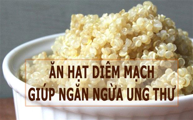 an-hat-diem-mach-giup-ngan-ngua-ung-thu-ns